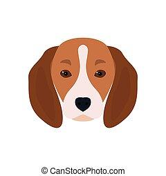 Lovely head bearded dog Beagle.