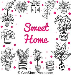 Lovely indoor and outdoor plants in pots. Hand-drawn black and white flowers, cactus, and succulents. Vector illustration. Natural design elements can be used for postcards, banners, websites or ads.