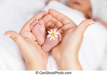 Lovely infant foot with little white daisy in mothers hands