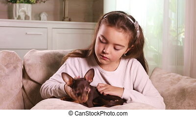 Lovely kid stroking a puppy Toy Terrier - Happy little girl...