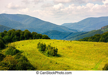 lovely mountainous countryside in autumn. forest on a grassy...
