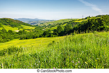 lovely mountainous countryside in summertime. grassy...