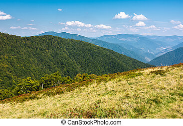 lovely mountainous landscape in early autumn - lovely...
