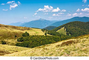 lovely mountainous landscape in early autumn - lovely...