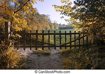 Lovely old gate into countryside field Autumn landscape