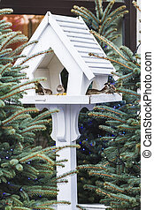 Lovely outdoor bird feeders in fur-trees, decorations for Christmas