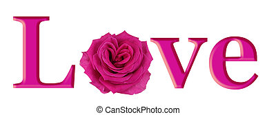 Lovely Pink Rose Heart in LOVE for Valentine's Day