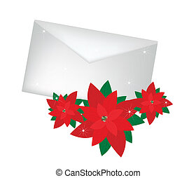 Lovely Red Poinsettia Flowers with A Letter