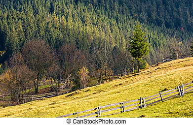lovely rural scenery with fence on grassy hillside....