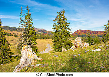 lovely scenery of Apuseni Natural Park of Romania in autumn....