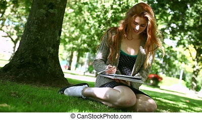 Lovely smiling redhead doing assignments sitting on lawn in a park