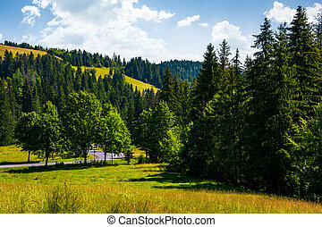 lovely summer countryside in mountains. grassy meadow near...