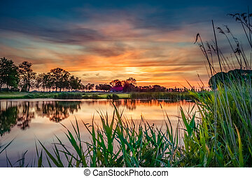 Lovely sunset in a typical Dutch landscape