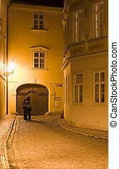 Lovers in night Prague