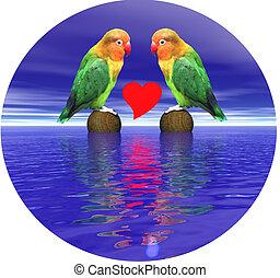 Loving agapornis-fischeri birds - Two loving agapornis-...
