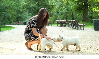 Loving pet owner spent time with puppies. Static shot. -...
