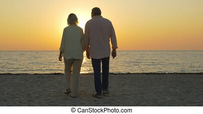 Loving senior couple enjoying sunset over sea - Steadicam...