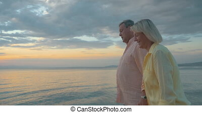 Loving senior couple enjoying walk at the seaside