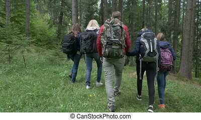Loving teen couple holding hands walking together through the woods with their friends on hike trekking forest