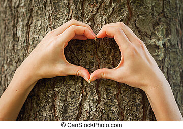 Loving the nature. Close-up of hands gesturing heartshape on the tree