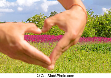 Loving the nature. Human hands forming a love