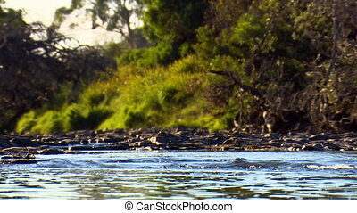 Low angle view looking up a rocky riverbed - Wide shot from...