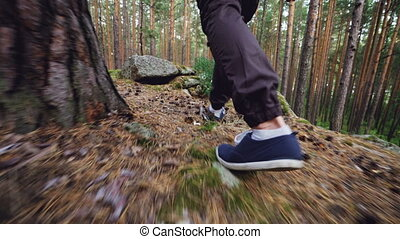 Low angle view of male tourist's legs walking in forest on...