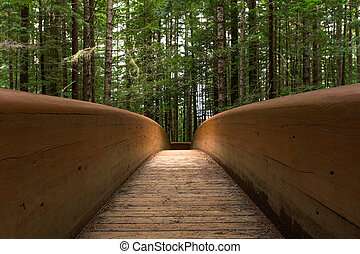 Low Angle View of Modern Wooden Bridge