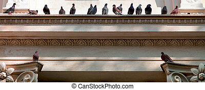 low angle view of pigeons on carved wall