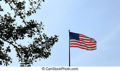 Low angle view of the flag of United States of America waving in the wind near a green tree on a blue sky background.