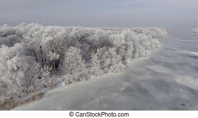 Low flying over a winter forest.