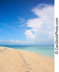 Low Isles - Queensland, Australia