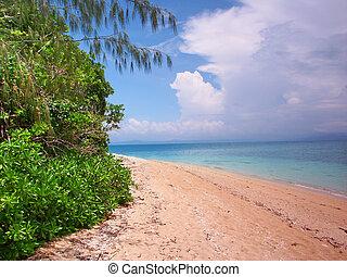 Low Isles - Queensland Australia