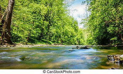 Low level view  of Jessamine Creek in Kentucky