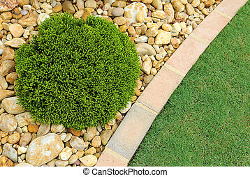 Low Maintenance Landscaping - Combinations of low-...