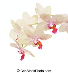 Low poly illustration macro of white with violet orchid flowers
