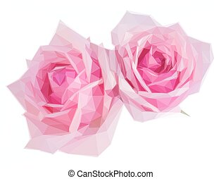 two pink blooming roses - Low poly illustration two pink...