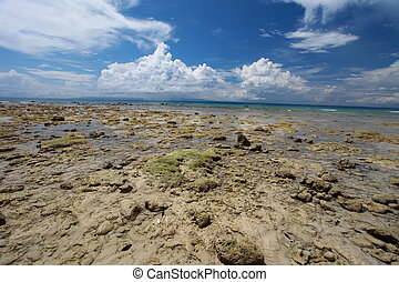 Low tide and blue sky and white clouds on the coral beach. Andaman islands.