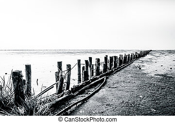 Low tide beach - Wooden poles on a low tide beach