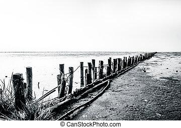Wooden poles on a low tide beach