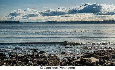 Low Tide Landscape 4