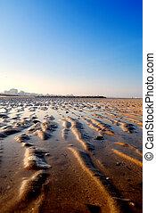 low  tide - low tide in the morning