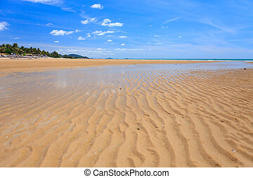 Low tide on golden sand beach