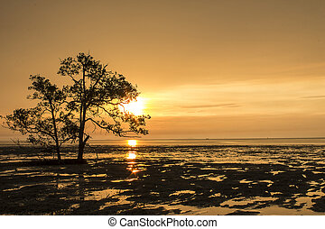 Low tide on the beach at sunset