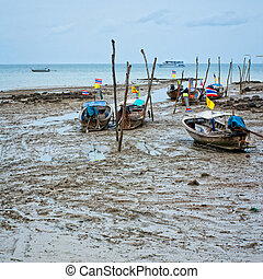 Low tide - Asian longtails in low tide, Thailand