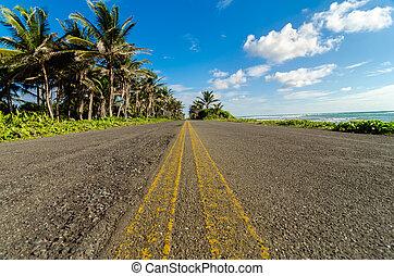 Low View of Coastal Road