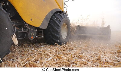 Low view of harvester gathering corn crop in farmland. Combine cutting dry maize stalks during harvesting at autumn season. Agricultural machine working on farm. Agronomy concept. Close up.