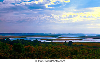 Lowcountry - A panoramic photograph of the lowcountry of ...