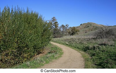 Lower Aliso Trail