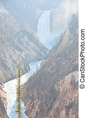 Lower Falls of Yellowstone National Park